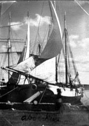Sail boats Ibiza